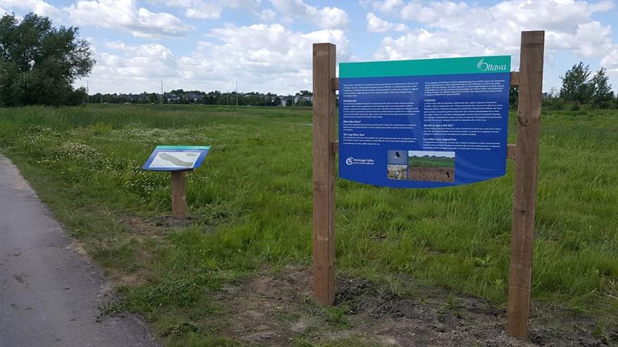 Carp River Restoration Area