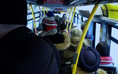COUNCILLOR'S NOTEBOOK: OC Transpo prognosis and solutions