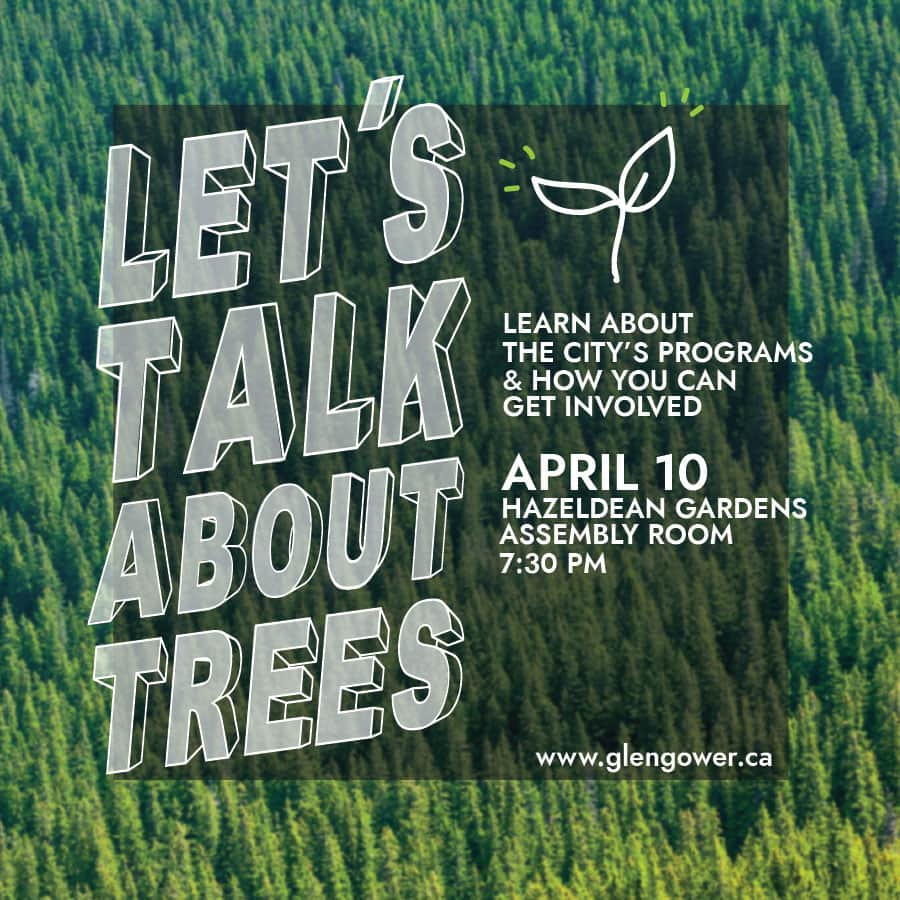 Let's Talk About Trees