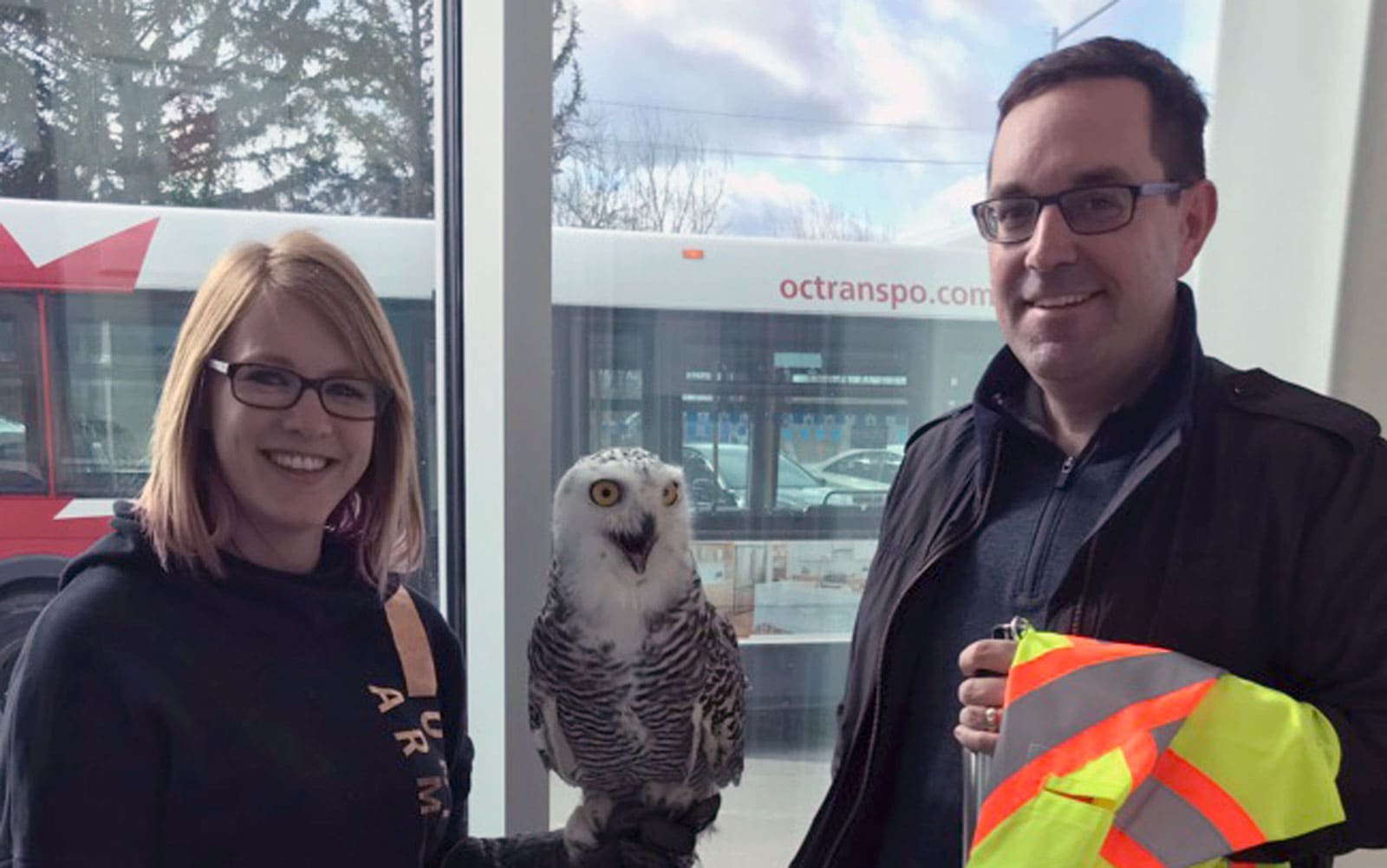 Meeting Quibbles the Owl at Trail Road landfill
