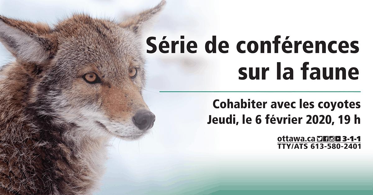 Série de conférences sur la faune - Cohabiter avec les coyotes