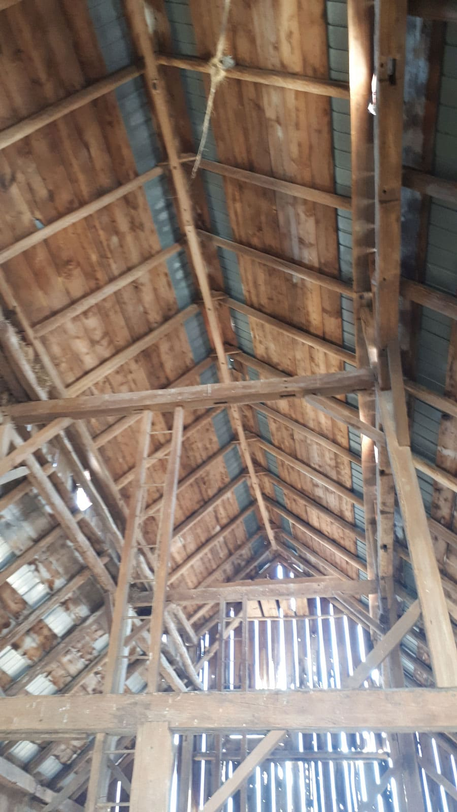 Interior of the Bradley Craig barn showing mortise and tenon joinery with wooden fasteners. April 2021