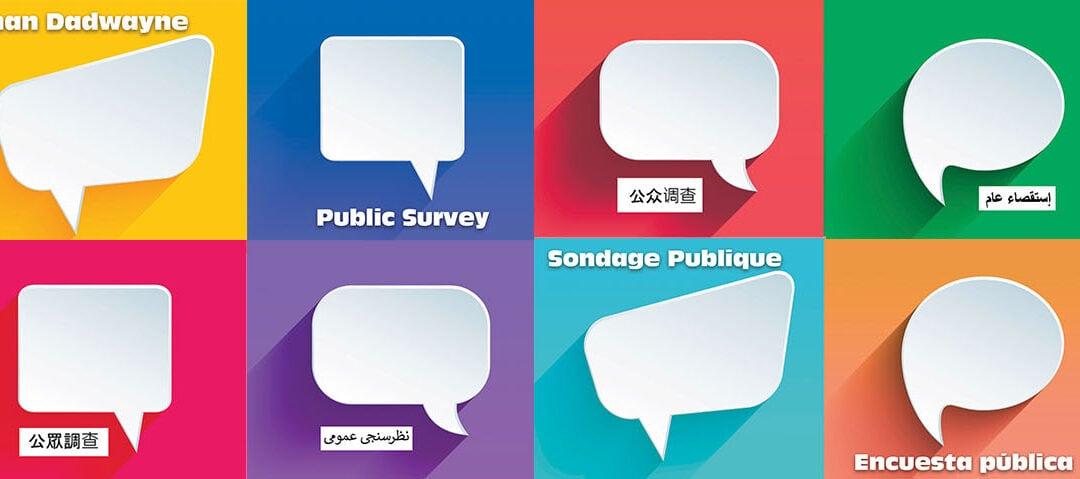Ottawa Police Service Budget Public Survey